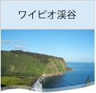 ハワイ島ワイピオ渓谷オプショナルツアー