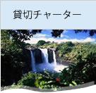 貸切チャーターでハワイ島観光