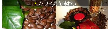 カメハメハ大王像(ヒロ)