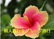 ハワイ島の個人旅行&グループ旅行