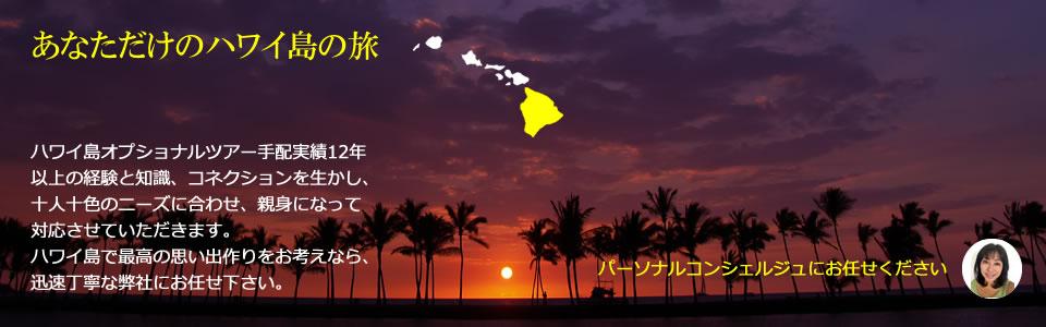 ハワイ島のオプショナルツアー