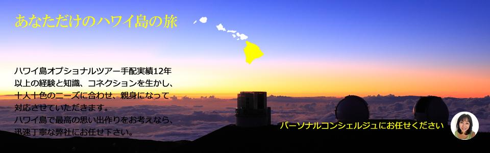 ハワイ島オプショナルツアー マウナケア山頂