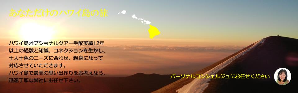 ハワイ島オプショナルツアー マウナケア