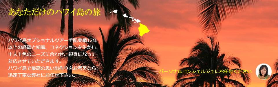 ハワイ島 現地オプショナルツアー 会社