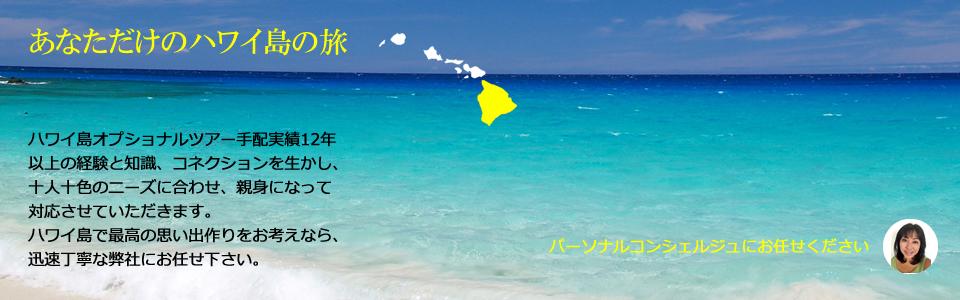 ハワイ島 オプショナルツアー